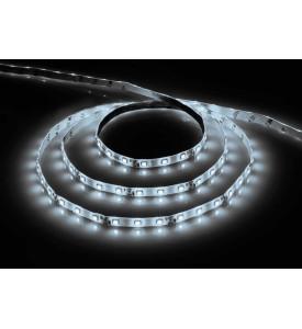 Cветодиодная LED лента Feron LS606 (дневной) 60SMD(5050)/м 14.4Вт/м 5м IP20 12V 6500К